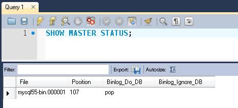 Checking the Master server status